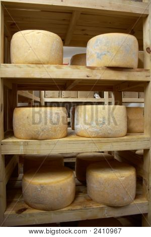 Head Of Cheese