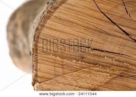 log texture, extreme closeup photo