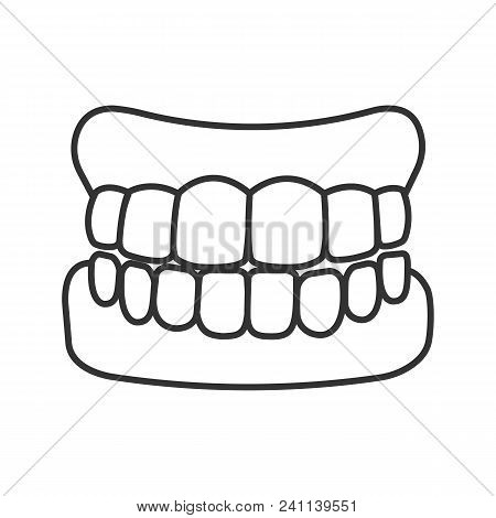Dentures Linear Icon. False Teeth. Thin Line Illustration. Human Jaw With Teeth Model. Contour Symbo