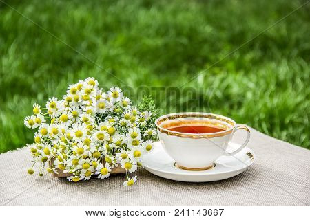Cup Of Tea And  Chamomiles. Fresh Chamomile And Hot Tea. Useful Tea In The Garden. Copy Space