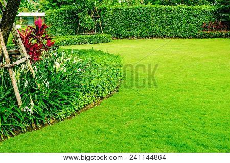 Landscaped Formal Garden, Front Yard With Garden Design, Peaceful Garden, Background Design