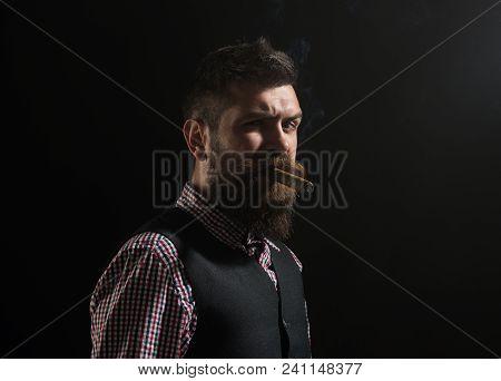 Bearded Man Smoking Cigar. Macho Man With Cigar. Gentleman With Beard And Mustache Smoke Cigar. Clas