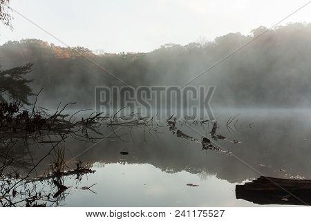 A foggy lake at dawn.  Hocking Hills State Park, OH, USA