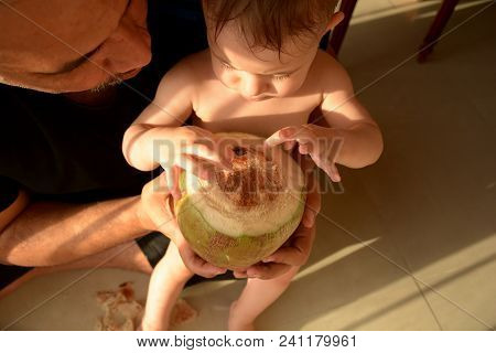 Father And Baby Have Prepared A Coconut For Drinking. They Are Going To Drink A Coconut Milk Direct