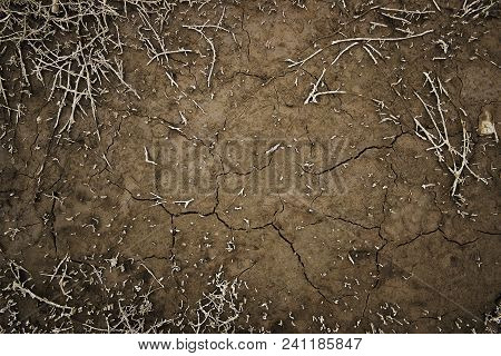 Brown Earth. Brown Soil. Earth Background. Natural Background. Grunge Soil. Cracked Earth.