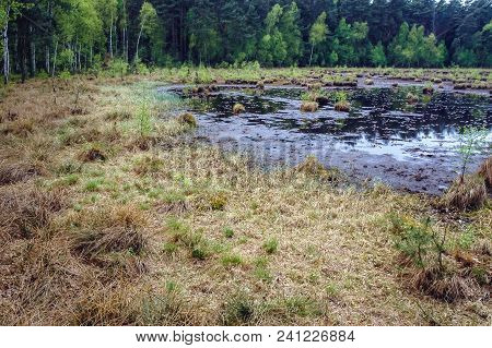 Protected Area Of Bug Landscape Park On The Bug River In Masovian Voivodeship Of Poland