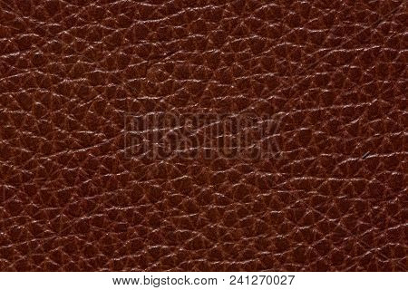 Contrast Leather Texture In Perfective Brown Colour. High Resolution Photo.