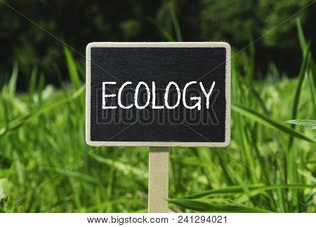 Ecology Written In Chalkboard. Sign On A Green Lawn. Photo Stock.