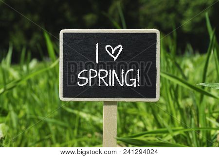 I Love Spring Written In Chalkboard. Sign On A Green Lawn. Photo Stock.