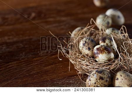 Conceptual Still-life With Fresh Raw Spotted Quail Eggs In Hay Nest Over Dark Wooden Background, Clo