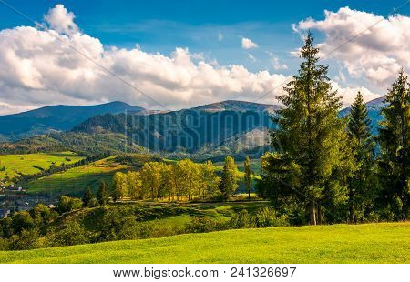Beautiful Landscape In Mountains. Trees On The Grassy Hills Of The Volovets Serpentine. Village At T