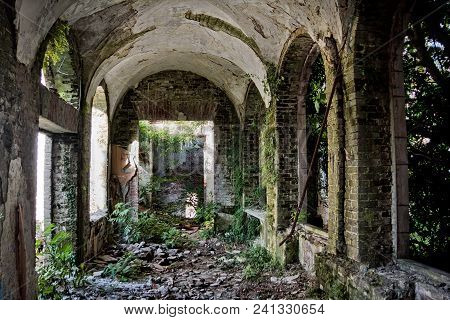 Ruined Abandoned Overgrown By Plants Interior Of Abandoned Mansion, Abkhazia, Georgia.