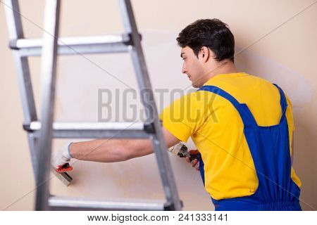 Young contractor employee applying plaster on wall