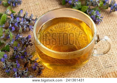 A Cup Of Blue Bugle Tea With Fresh Blooming Ajuga Reptans Plant