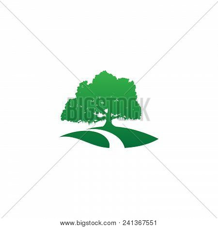 Tree Icon Modern Symbol For Graphic And Web Design With Road. Tree Icon Simple Sign For Logo, Web, A