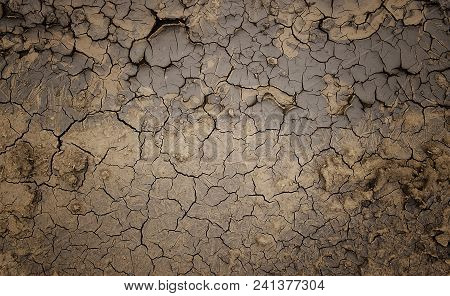 Dry soil background. Drought. Gray dry soil. Soil background. Cracked soil background. Earth pattern. Soil texture. Cracked earth. Natural background. Grunge earth.
