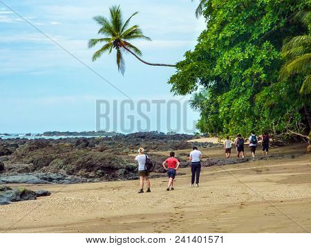 Hiking In Corcovado National Park On The Beach With A Leaning Solitary Palm Tree - Costa Rica.