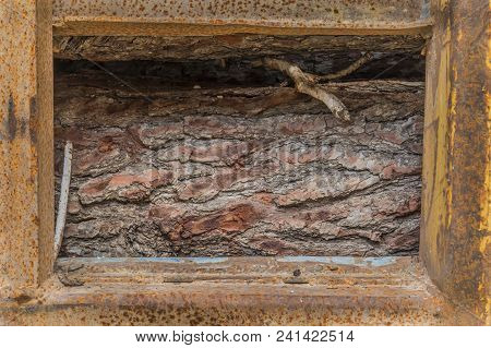 Logs Of Pine Wood Stored In A Rusty Metal Container