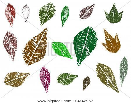 Autumn leaves, each separately grouped for ease of editing and coloring