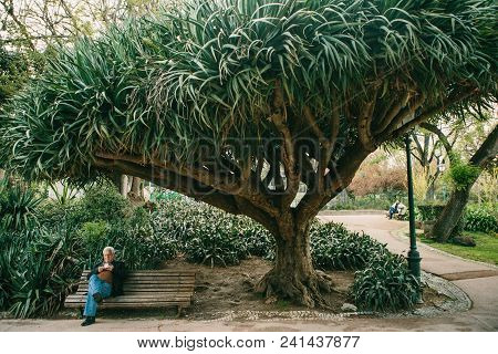 Lisbon, Portugal 01 May 2018: Lonely People In Garden Under Trees. Lonely Man Waits His Woman And Wa