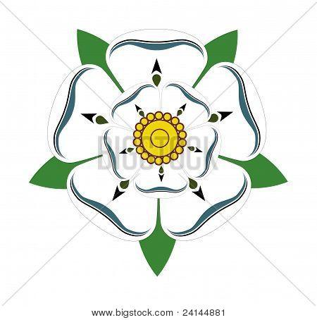 Vita Rosen i Yorkshire