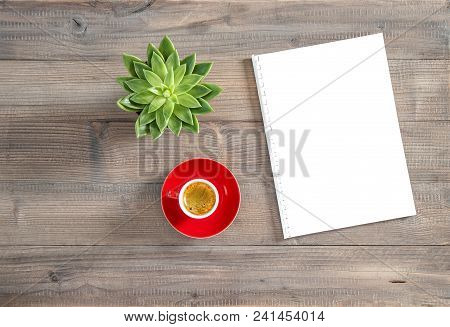 Office Workplace Flat Lay. Note Book Paper, Cup Of Coffee, Succulent Plant