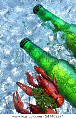 Bottle Of Beer With Crayfish In Ice Cubes.closeup.green Bottle.hot Summer Fresh Drink.copy Space