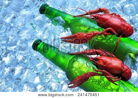 Two Crayfish Ride On Two Bottle Of Beer. In Ice Cubes.beer.closeup.green Bottle.creative Advertising