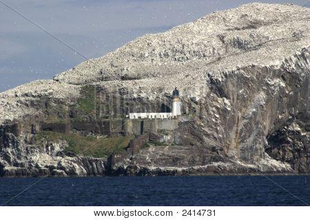 Bass Rock Lighthouse, Scotland