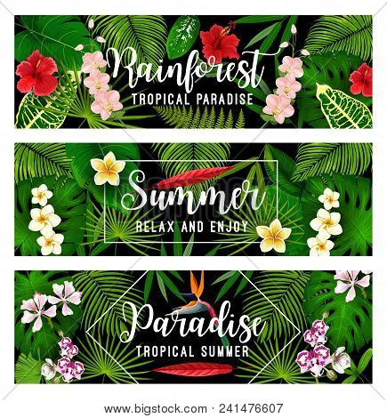 Summer Tropical Vacation And Paradise Holiday Banner With Exotic Palm Leaf And Jungle Flower Frame.