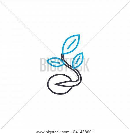 Preparation Of Seedlings Line Icon, Vector Illustration. Preparation Of Seedlings Linear Concept Sig