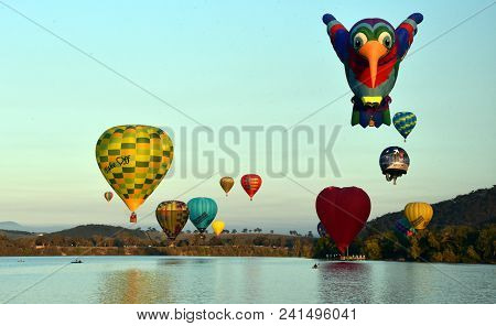 Canberra, Australia - Mar 11, 2018.  Big hummingbird, green frog and colourful Hot air balloons flying in the air above Lake Burley Griffin and Black Mountain, as part of the Balloon Spectacular Festival.