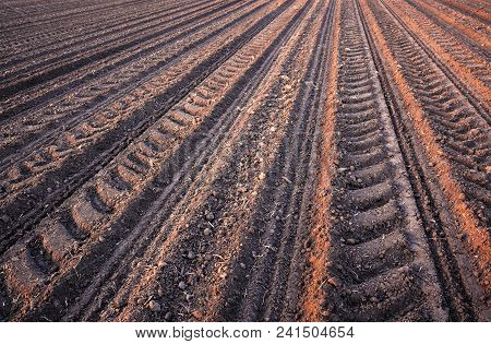 Rows of soil before planting.Furrows row pattern in a plowed field prepared for planting crops in spring. poster