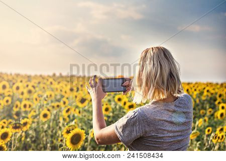 Field Of Sunflowers In Sunlight. Girl, Rear View, On The Field Of Sunflowers. Happy Young Woman Make