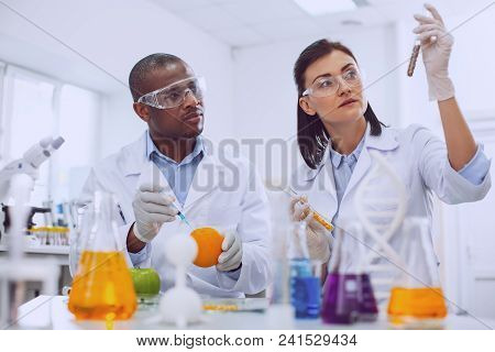 Genetically-modified vegetables. Determined skilled scientists working in the lab and modifying vegetables poster