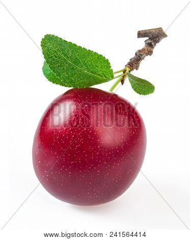Close-up Ripe Plum With Leaves, Isolated On White