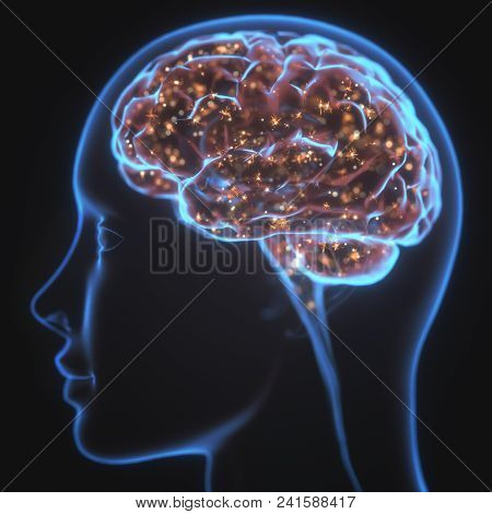 3d Illustration. X-ray Of The Head And Human Brain In Concept Of Neural Connections And Electrical P