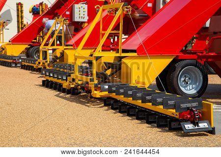 Grabbing Grain From Asphalt Surface By Scrapers Of Conveyor Grain Loader.