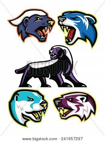 Mascot Icon Illustration Set Of Fossorial Carnivores Like The Honey Badger Or The Ratel, Polecat Or