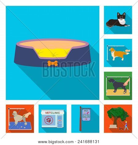 Pet Flat Icons In Set Collection For Design. Care And Education Vector Symbol Stock  Illustration.