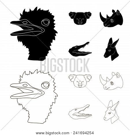 Ostrich, Koala, Rhinoceros, Crocodile, Realistic Animals Set Collection Icons In Black, Outline Styl