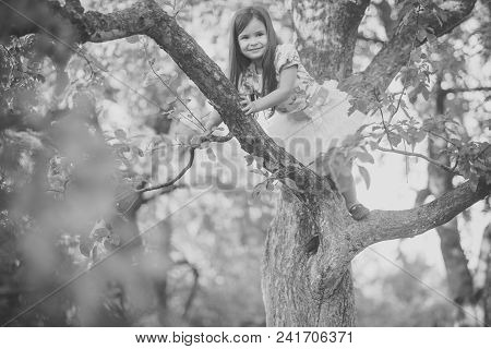 Child Childhood Children Happiness Concept. Kid Fashion, Beauty, Style. Child Smile On Tree Branch,