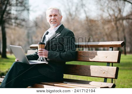 Fresh Air. Low Angle Of Merry Mature Businessman Using Laptop While Sitting On Bench