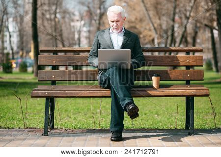 Business Correspondence. Focused Mature Businessman Using Laptop While Sitting In Park