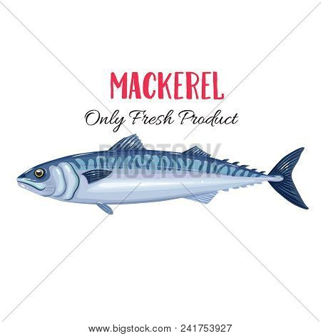 Vector Mackerel. Icon Badge Fish For Design Seafood Packaging And Market.