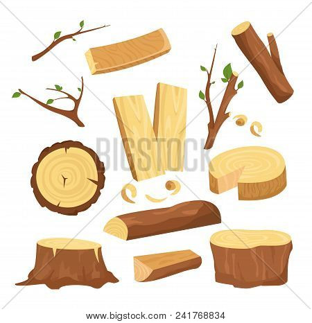 Vector Illustration Set Of Materials For Wood Industry, Tree Logs, Wood Trunks, Chopped Firewood Woo