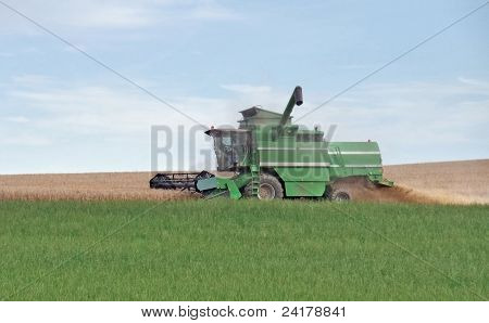 agricultural scenery showing a green harvester at the edge of a crop field while harvesting at summer time in Southern Germany poster