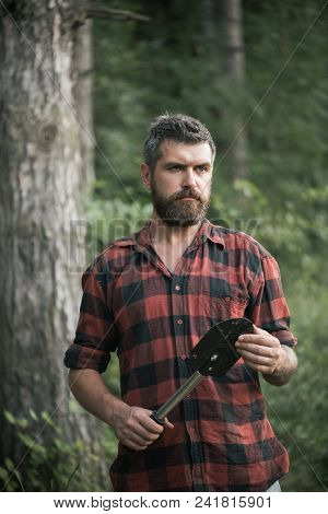 Brutal Lumberjack In Woods. Bearded Man Holding Small Spade In His Hands. Young Scientist Doing Rese