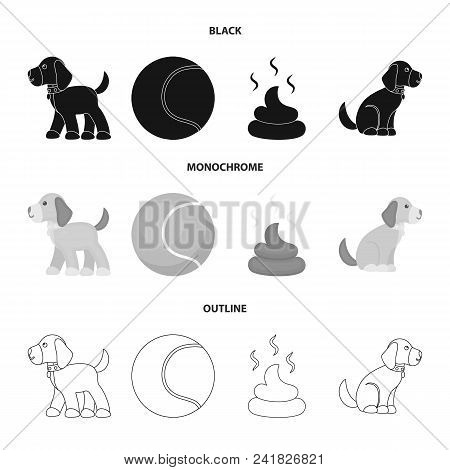 Dog Sitting, Dog Standing, Tennis Ball, Feces. Dog Set Collection Icons In Black, Monochrome, Outlin