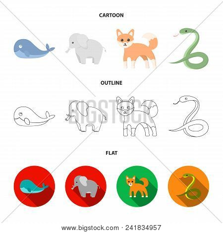 Whale, Elephant, Snake, Fox.animal Set Collection Icons In Cartoon, Outline, Flat Style Vector Symbo